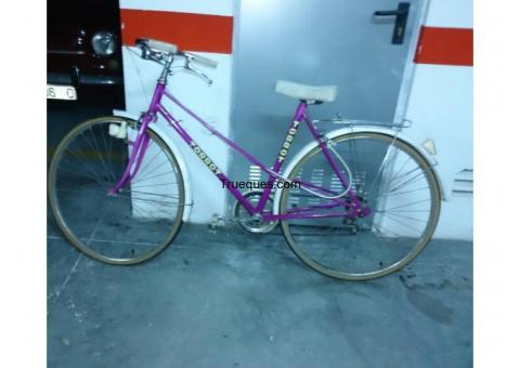 Bicicleta torrot años 80 por bicicleta pelgable o algo interesante